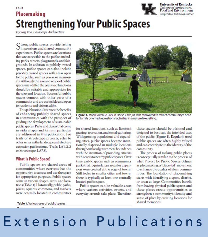 image of an article about placemaking representing extension publications